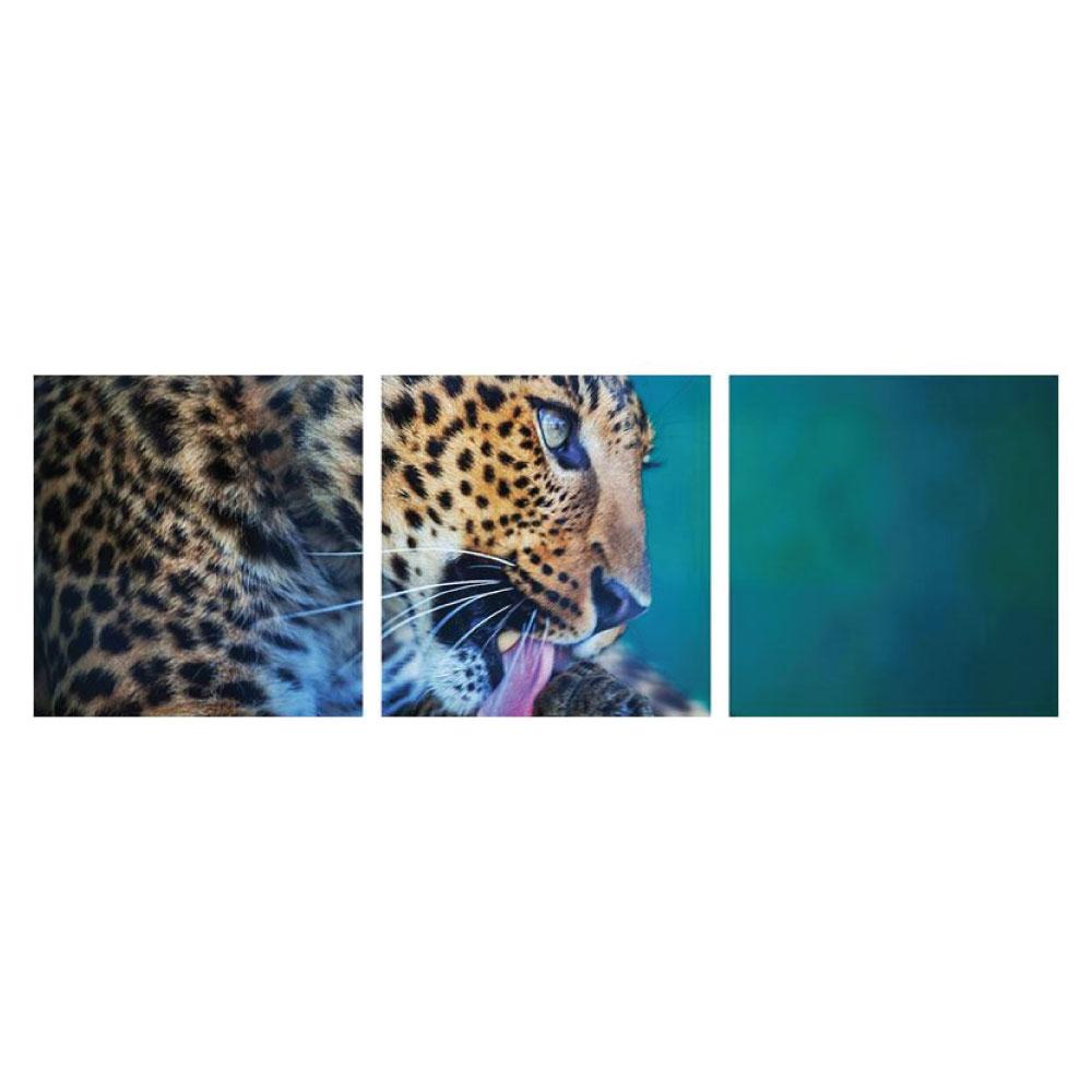 Acrylglasbild Leopard Tier XL Motiv 3 teilig Panorama quadratisch Bilder