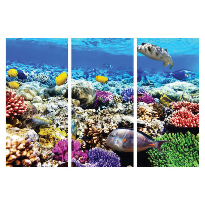 Acrylglasbild Tiefsee Aquarium HD Hochformat Bilder
