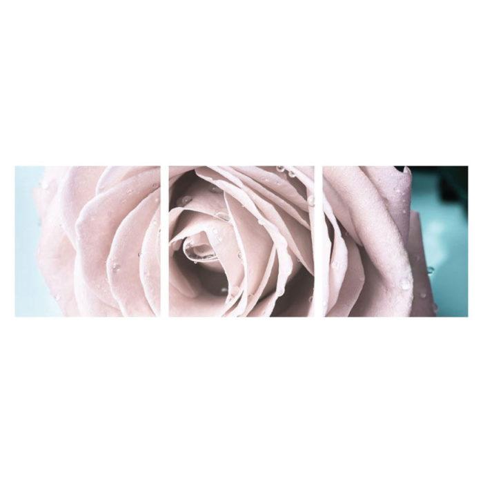 Metallic Bild Pastel Rose 3 teilig Panorama quadratisch Bilder
