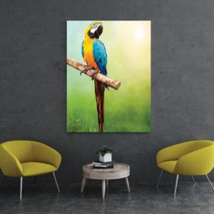 Verschiedene Auswahl an Bilder Arten für das Wartezimmer