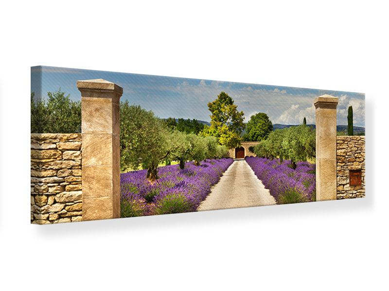 Leinwandbild Bunt Panorama Lavendel Garten Querformat