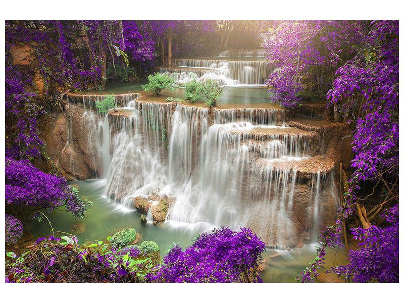 Leinwandbild-Garten-Eden lila querformat
