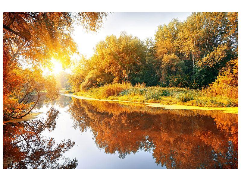 Leinwandbild- Herbstfarben Waldspiegelung-im-Wasser