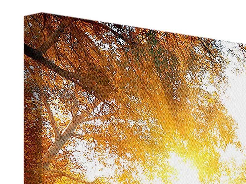 Leinwandbild-Waldspiegelung-im-Wasser Querformat